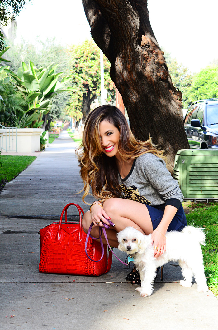 JessiMalay - dogs - Maltese - Express - croptop - miniskirt - mini - heels - high heels - booties -laceupbooties - GivenchyAntigonabag - Givenchy - Antigona - bag - purse - RebeccaMinkoff - ring - rings - TIffanyandco - MadeForLa - KRMA - CaiaJewels - RachelZoe - bangle - bracelet - accessories - hair - makeup -hairandmakeup - mua