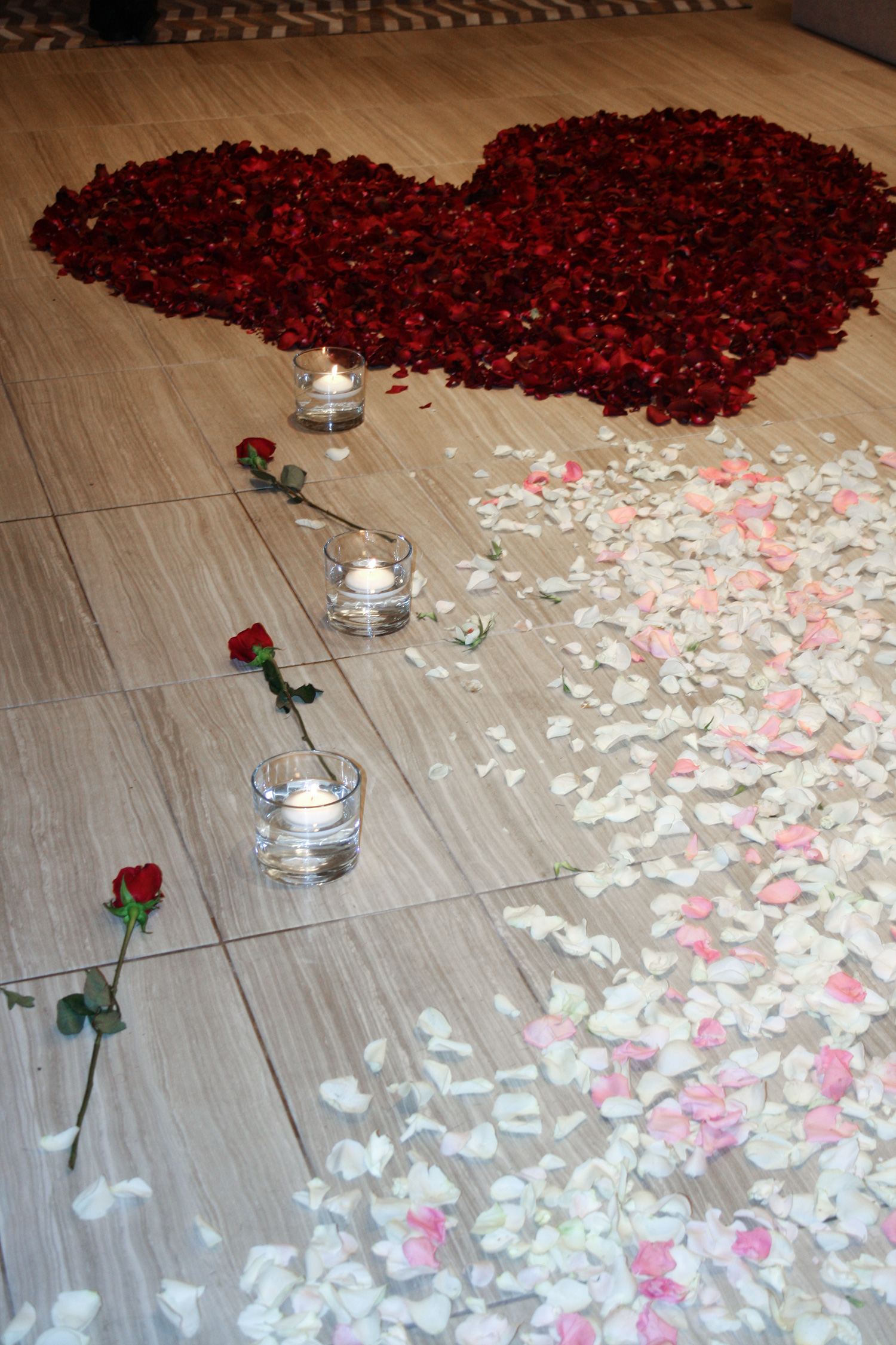 Proposal Rose Pedals on Floor