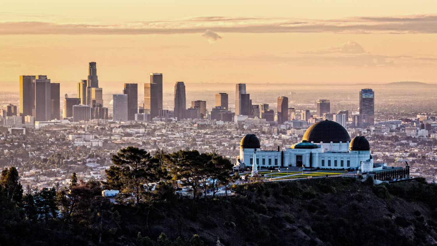 the griffith observatory The observatory is also great for sight-seeing and hiking in griffith park walking around you see stunning views of the lake and see various species of birds.