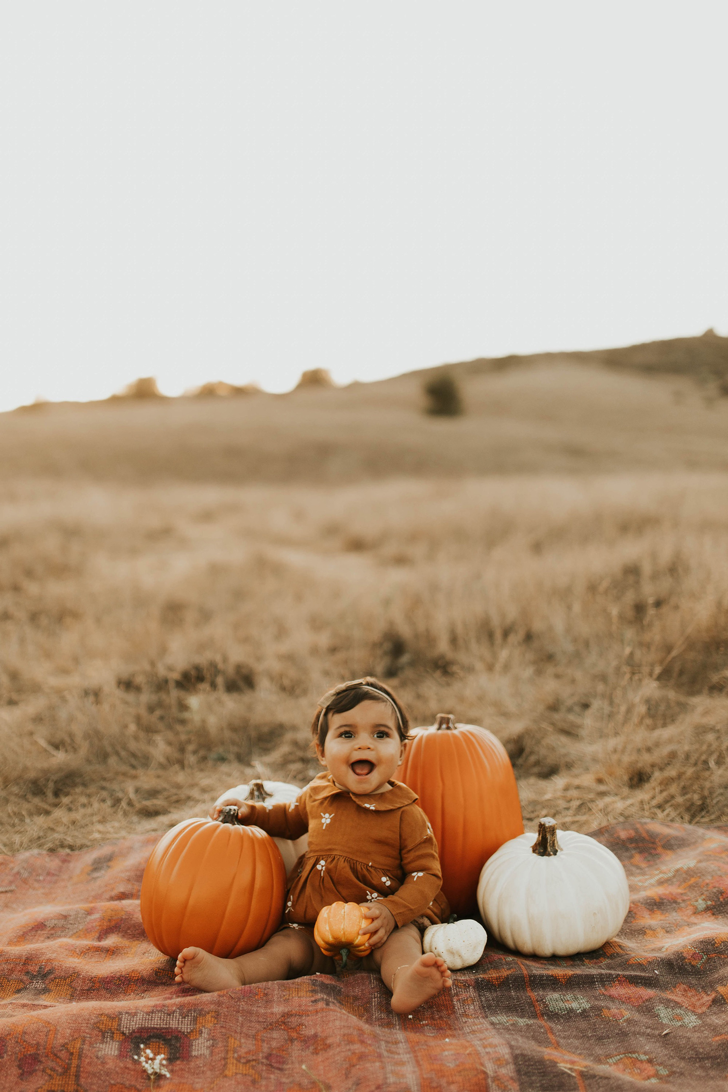 pumpkin patch photo ideas
