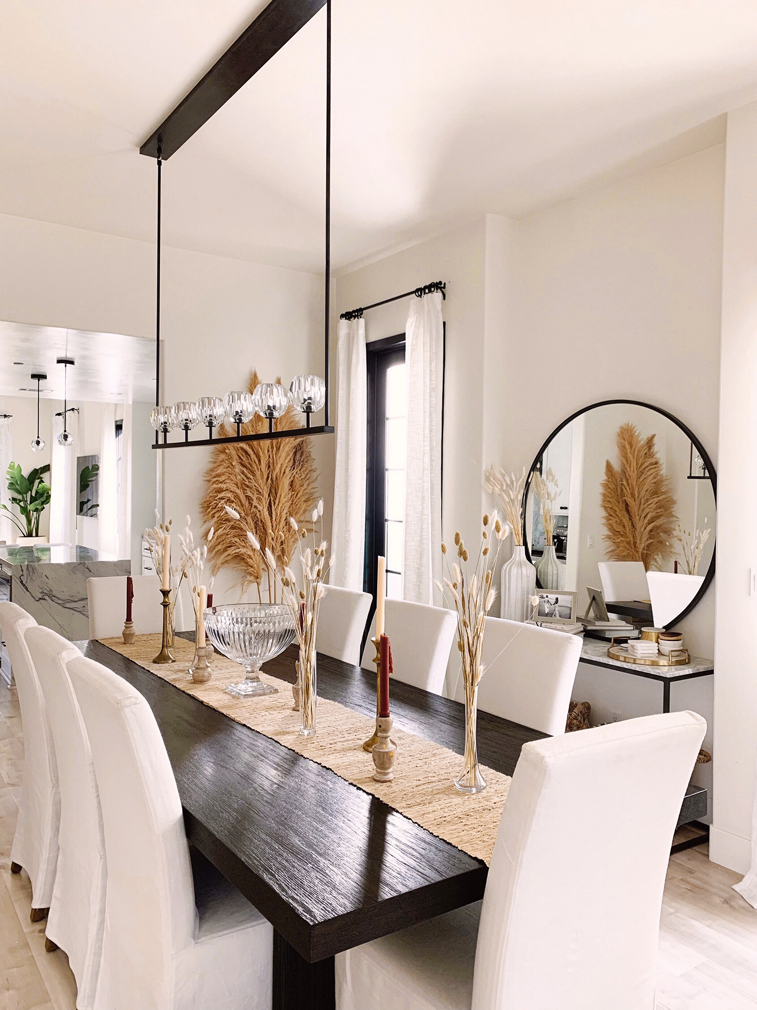 where to buy pampas grass